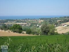 Dalla campagna al mare: Senigallia e l'entroterra
