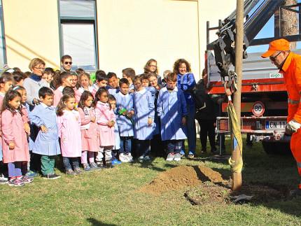 """La festa dell'albero 2015 a Ostra, scuola primaria """"don A. Morganti"""""""