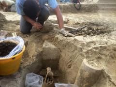 """E' in corso la campagna di scavi archeologici presso il Parco Archeologico Regionale """"Città Romana di Suasa"""""""