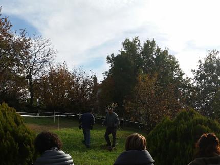 Festa dell'albero 2016 a Ostra Vetere