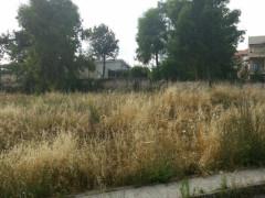 Terreni, aree edificabili