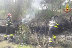I vigili del fuoco sono intervenuti a Morro d'Alba per un incendio che ha interessato le sterpaglie in località Sant'Amico