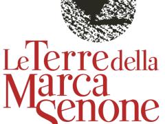 Terre della Marca Senone, logo