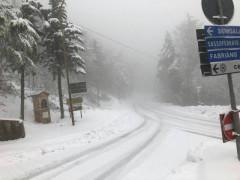Neve ad Arcevia