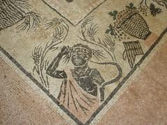 Scavi archeologici a Castelleone di Suasa
