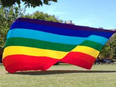 Pace, bandiera della pace