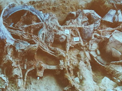 Progetto Archeonevola, scoperta archeologica