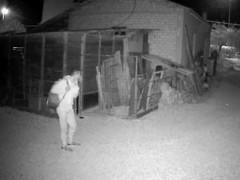 Ladri ripresi dalle telecamere