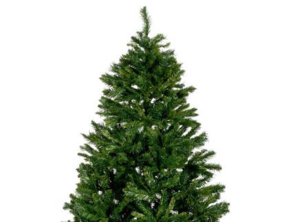 alberi di Natale, Natale