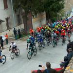 Passaggio della Tirreno-Adriatico 2019 a Ostra