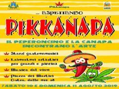 """Locandina dell'evento """"Aspettando Pikkanapa"""""""