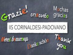 IIS Padovano-Corinaldesi
