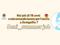 Seni_summer job