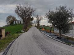Strada Paradiso Corinaldo
