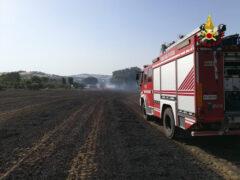 Incendio a Corinaldo: a fuoco campo di grano