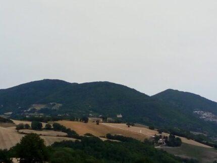 Monte Sant'Angelo - Arcevia