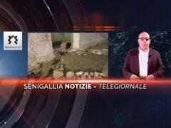 senigallia notizie telegiornale