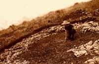Sito di Monte Croce Guardia